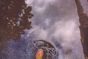 puddle-690866_640